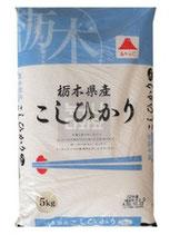Tochigi Koshihikari Reis 5kg  栃木県産こしひかり