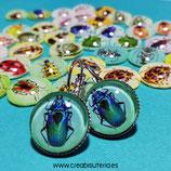 Liquidación - Cabuchones bichitos de colores 14mm (23 pares)