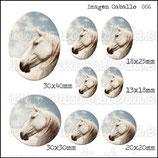 Imagen caballo 006