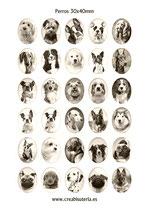 30 Imágenes  de perros sepia 30x40mm