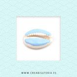 Concha de playa grande esmaltada en color azul pastel C33  (5 unidades)