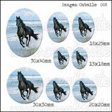 Imagen caballo 008