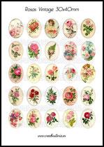 25 Imágenes vintage de Rosas 30x40mm