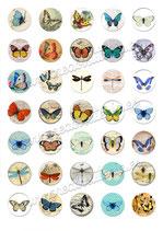 35 Imágenes vintage de mariposas 30x30mm