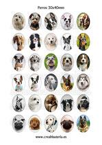 30 Imágenes de perros 30x40mm