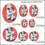 Imagen perro periódico vintage 001