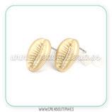 Pendiente base caracola caputserpentis dorado mate sin anilla C951 (5 pares)