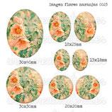 Imagen Flores Naranjas 0023