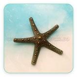 Colgante estrella de mar gigante estrecha  918