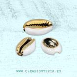Concha de playa natural con reborde dorado sin anilla - 2 Unidades - c98