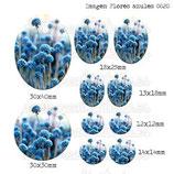 Imagen Flores azules 0020
