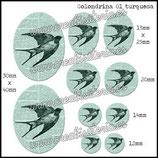 Imagen Golondrina 01 turquesa