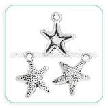 CHARM MARINO -   estrella de mar puntitos  (10 unidades)