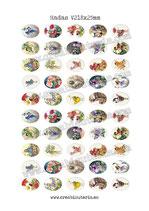 50 Imágenes para camafeos de Hadas V2 Formato:18x25mm