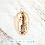 Concha de playa natural con reborde dorado con anilla superior - Unidad -c31