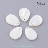 Concha en forma de gota color nácar P263 (10 unidades)
