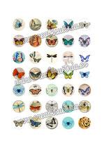 35 Imágenes vintage de mariposas 25x25mm