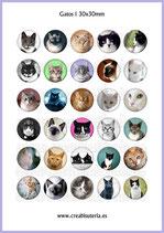 Imágenes de gatos reales (30 imágenes)
