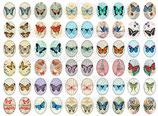 60 Imágenes vintage de mariposas 18x25mm