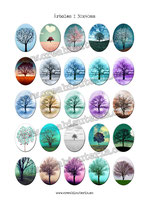 25 imágenes Árboles I 30x40mm