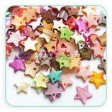 Concha en forma de estrella (10 unidades) CONCH-Estrellitas