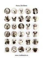 30 Imágenes  de perros sepia 30x30mm