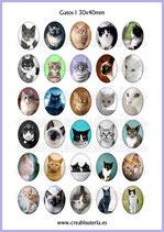 Imágenes de gatos reales 30x40mm (30 imágenes)