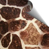 4283 giraffe