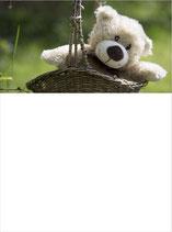 SB_Teddy im Korb
