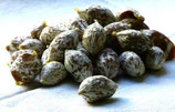 10 grelots au piment et à l'anis