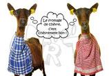 CP54_ste_maure: Le fromage chèvrement bon