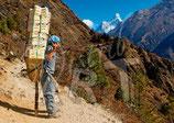 CP07_Népal : Porteur devant l'Ama Dablam (6812m)