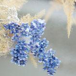 Vergissmeinnicht Kette, Blütenanhänger, blau