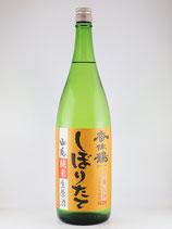 香住鶴 山廃i純米 しぼりたて 生原酒 1800