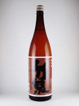 竹泉 純米酒 どんとこい 1800