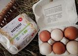 Bio Hühnerei 6STK Packung