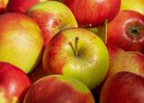 Apfel säuerlich 1kg