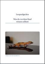 Ratgeber Leopardgeckos