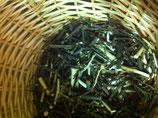 WeidenRinde Salix