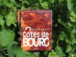 Fontaine Côte de Bourg 10 Litres 2016