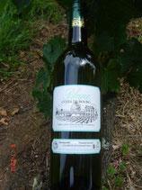 Blanc Sauvignon