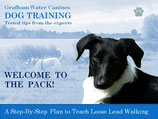 YES! I want Jim's 'Perfect Walk' - Step-By-Step Plan for Loose Lead Walking