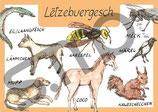 Postkarte Lëtzebuergesch Tiere 3