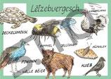 Postkarte Lëtzebuergesch Tiere 1