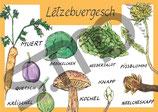 Postkarte Lëtzebuergesch Obst und Gemüse 2