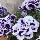 花衣 藍染