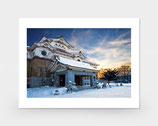 фотография *музей* зима