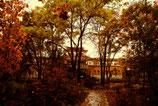 фотография *музей* осень