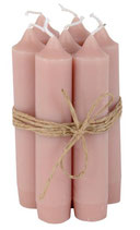 Kerzenbündeli rosa malva, 5 Stk.MR