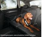Hundeschutzgurt Größe M (für mittelgroße Hunde)